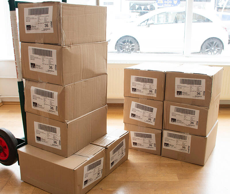 Boxes of Bluebird Care Folded Leaflets